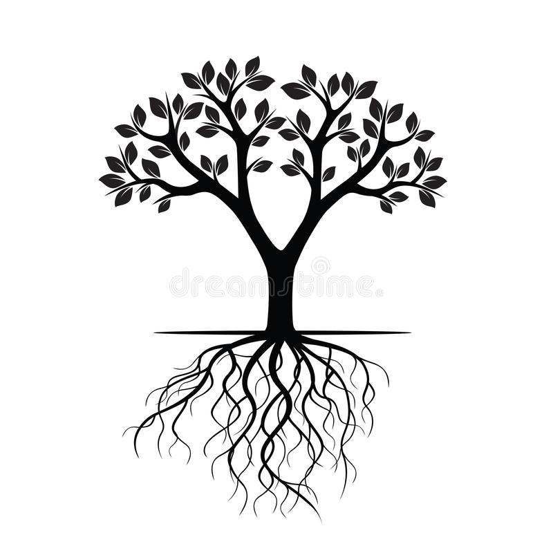 white tree and roots vector illustration stock illustration rh dreamstime com tree with roots vector logo tree outline with roots vector