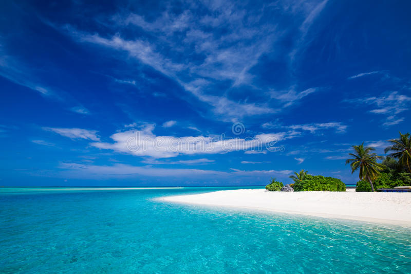 White tropical beach in Maldives with few palm trees and lagoon stock photo
