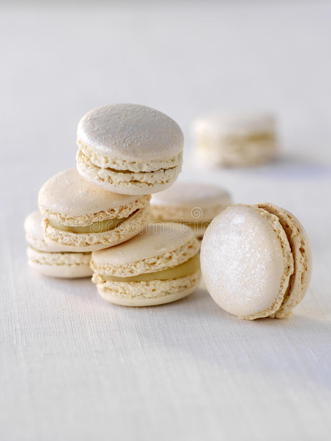 Download White truffle macaroons stock photo. Image of dessert - 23703484