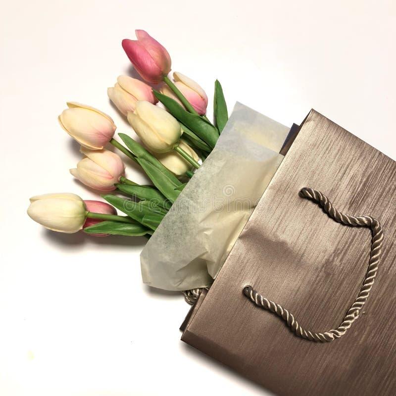 White tulip flowers stock photography