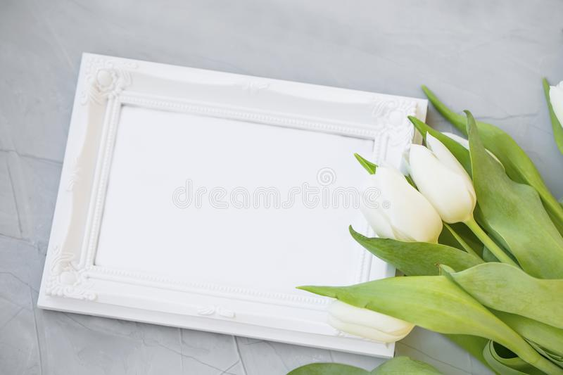White tulips with empty frame copy space, spring mother`s day greeting, beautiful spring tulips bouquet royalty free stock images