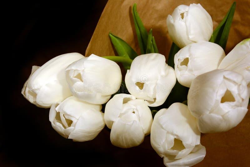White tulips flower bouqet on dark background. Bouqet of white tulips, beautiful spring flowers stock image