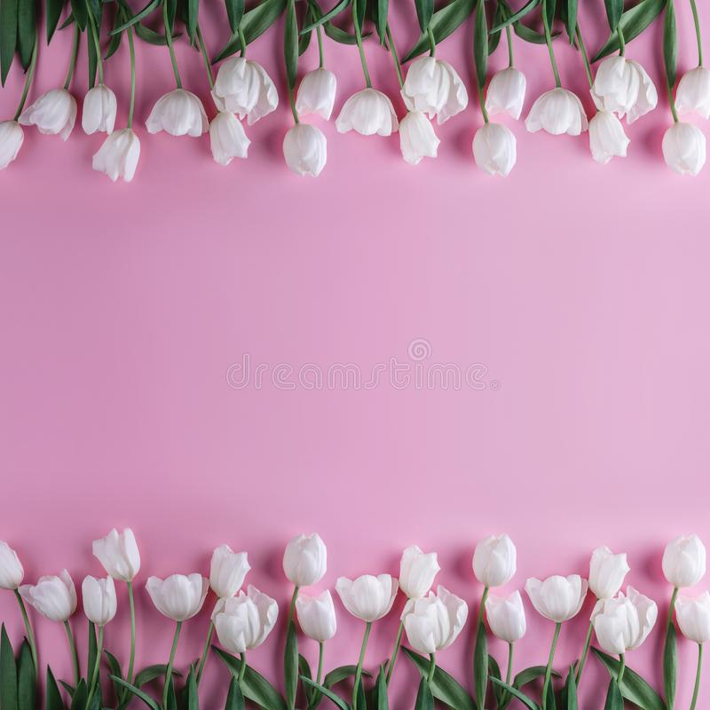 White tulips flowers over light pink background. Greeting card or wedding invitation. Flat lay, top view, copy space. Wide composition stock photography