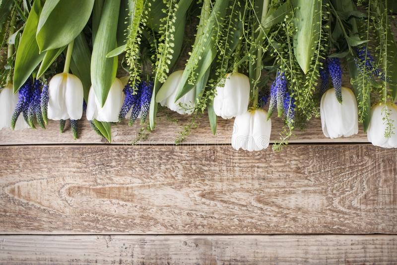 White tulips on wooden background, easter, spring theme stock image