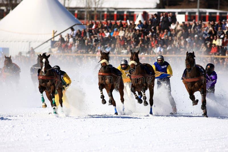 White Turf 2008 in St. Moritz stock images