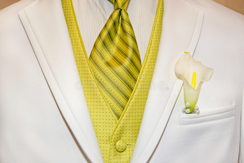 White Tuxedo royalty free stock images
