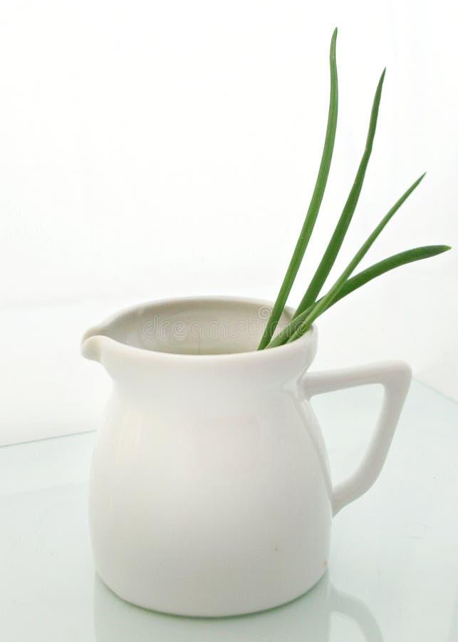 Free White Vase Stock Images - 18506264