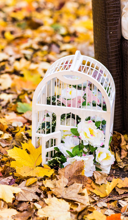 White vintage birdcage on autumn leaves stock images