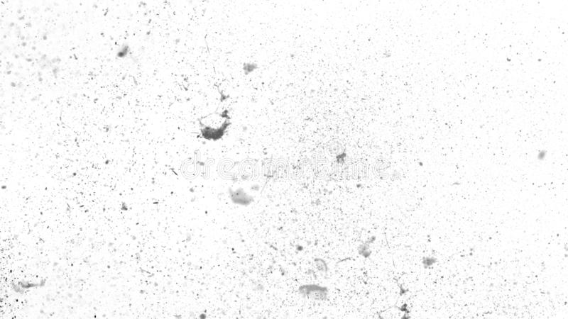 White vintage dust scratched background, distressed old texture overlays space for text. stock photography