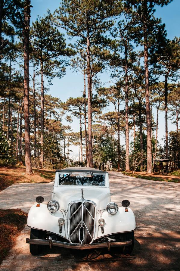 White vintage luxury classic convertible car at colonial villa. FEB 26, 2014 Dalat, Vietnam - Warm atmosphere and light through pine tree with white vintage royalty free stock image