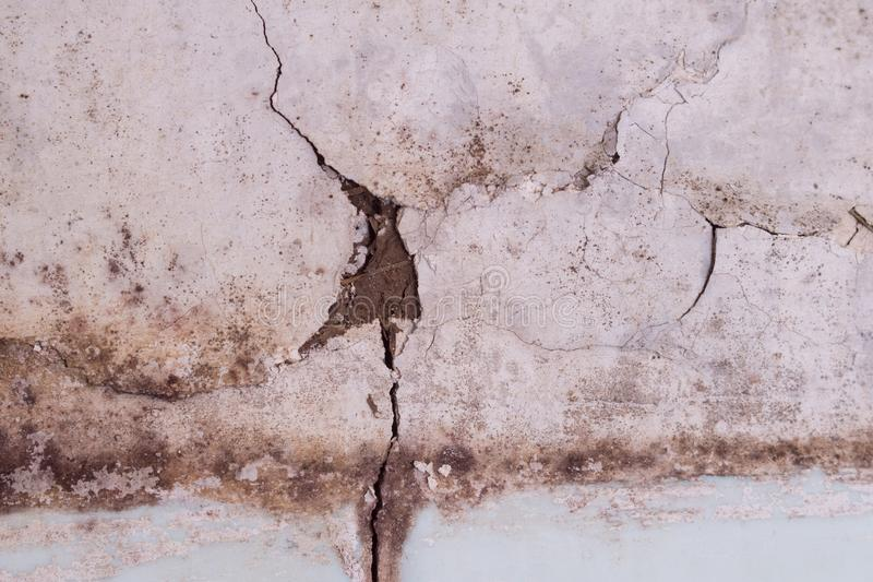 White wall with cracks. mold. unhygienic. stock image