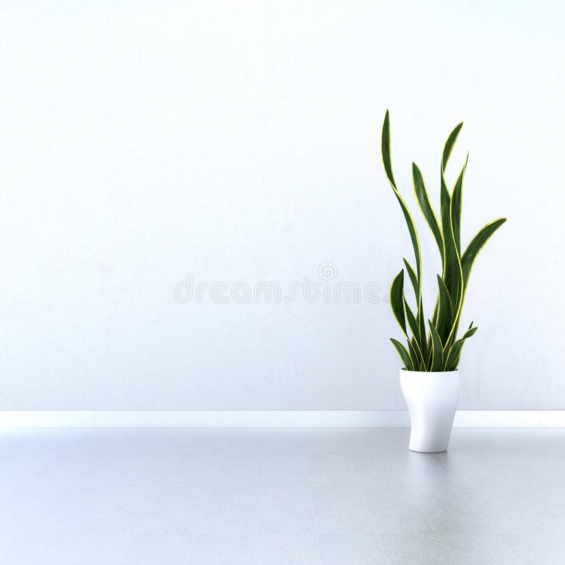Download White Wall With Green Plant Stock Illustration - Image: 33549653