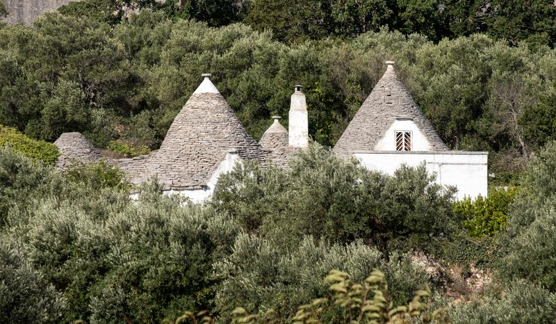 White washed conical roofed building in a field on an olive farm in the area of Cisternino / Alberobello in Puglia Italy. Traditional white washed conical roofed stock images