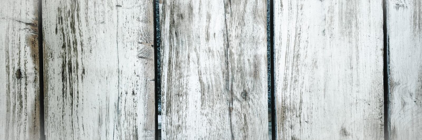 White washed wood texture. Light wood texture background.  royalty free stock photo