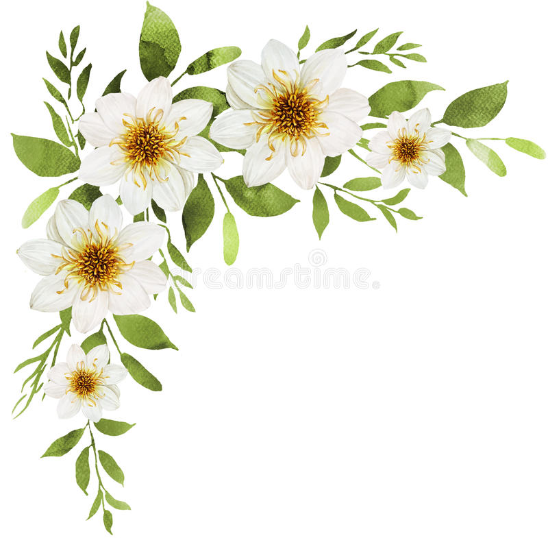 White watercolor flowers bouquet decoration with white dahlia vector illustration