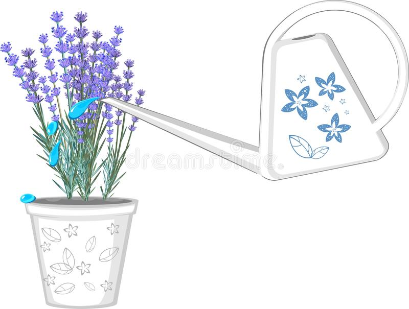 White Watering Can Stock Images