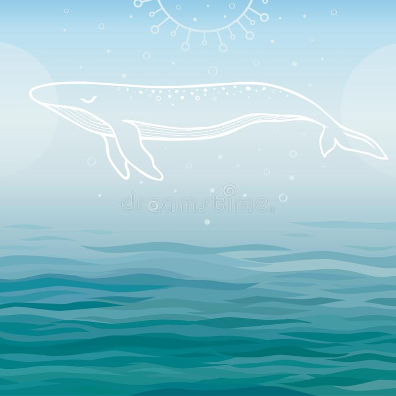 White whale on blue water vector illustration
