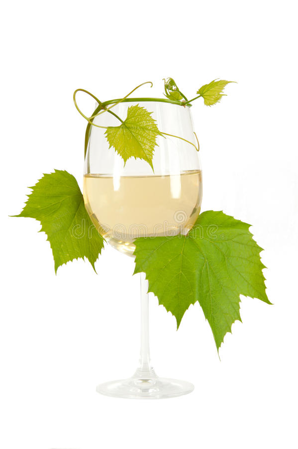 Download White Wine Stock Image - Image: 25026391