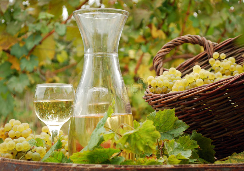 White wine and grape stock image