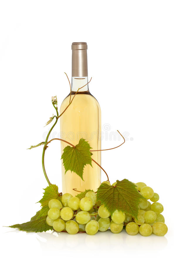 Download White Wine with Grape Vine stock image. Image of background - 20306747