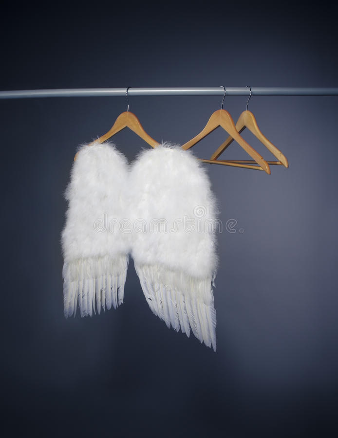 White wings stock images