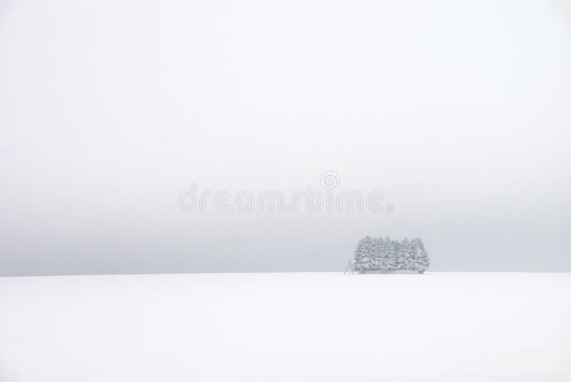 White winter landscape royalty free stock image