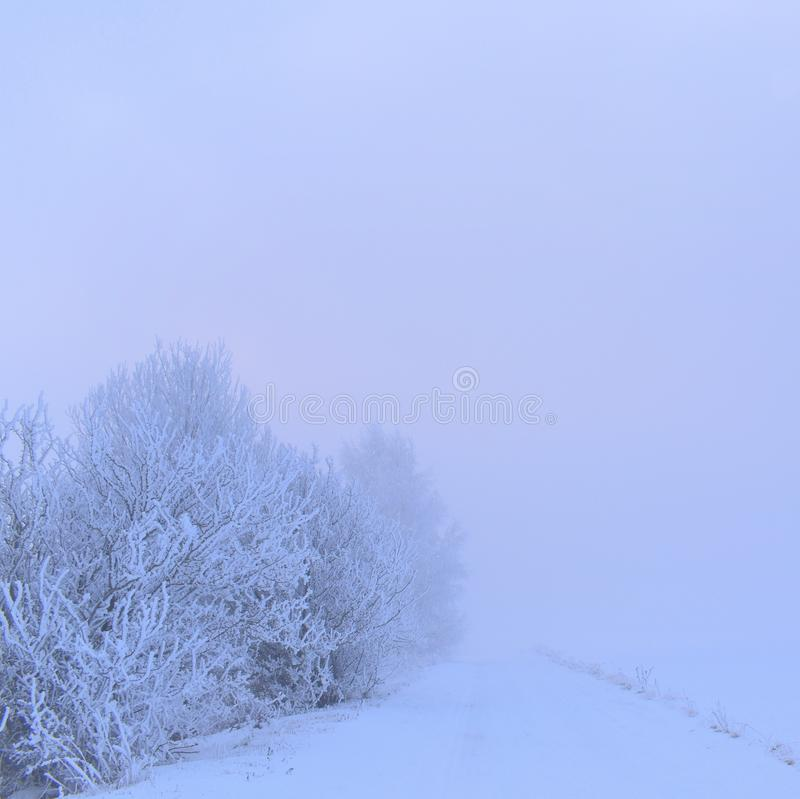 Mysterious white winter road.Foggy day Lithuania royalty free stock image