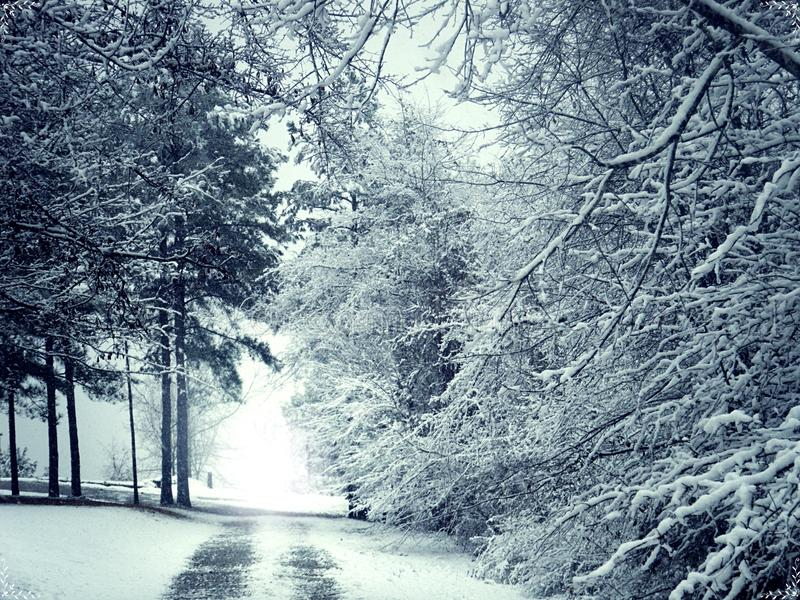 White Winter Snow Road royalty free stock images