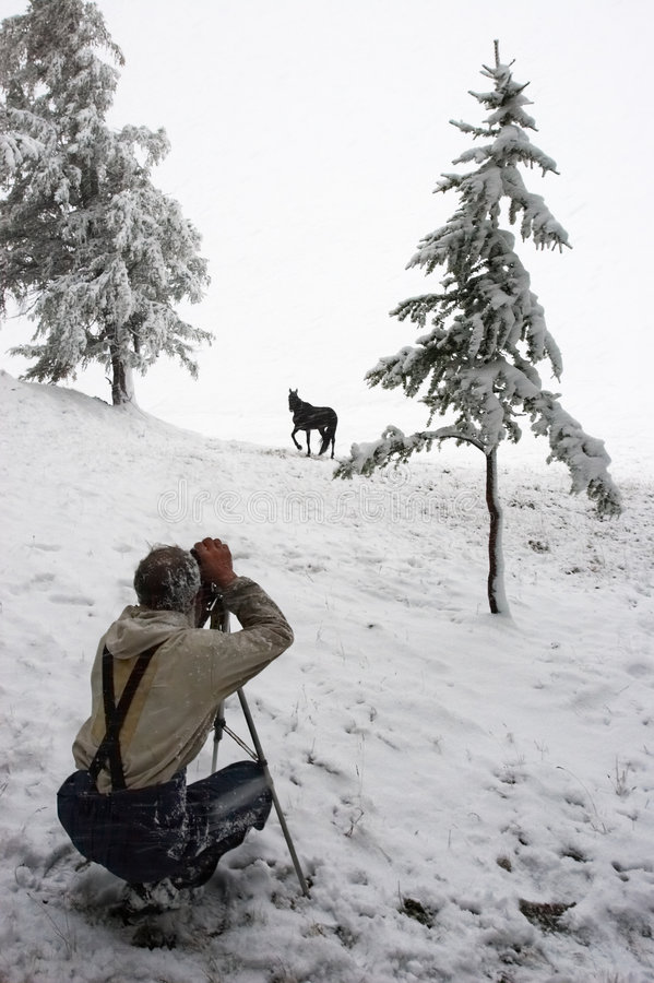 Free White Wood, Men, Horse And Snow. Stock Image - 1891881