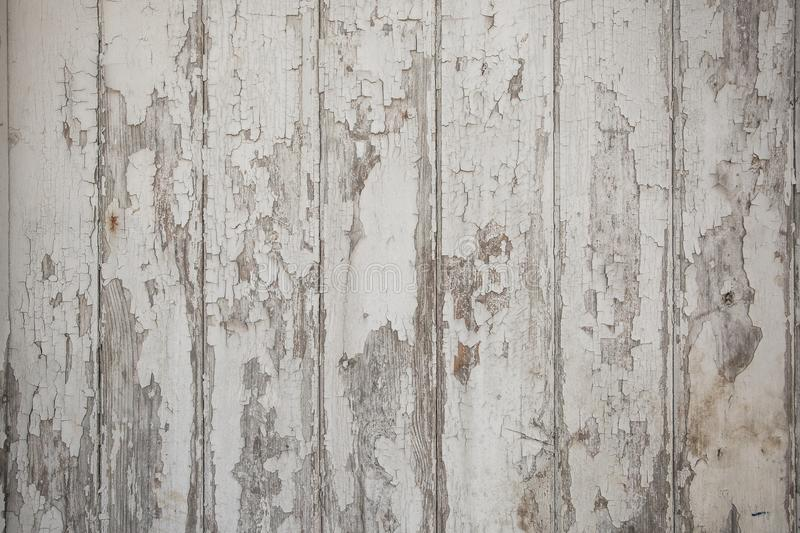 White wood texture background with natural patterns royalty free stock images