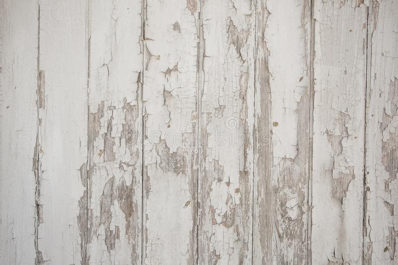 White wood texture background with natural patterns royalty free stock photos