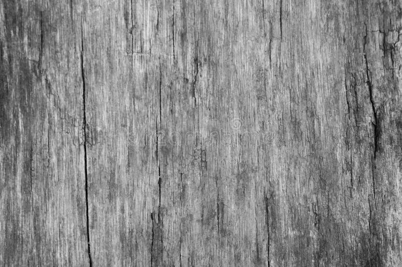 White wood texture with natural pattern, wooden background royalty free stock images