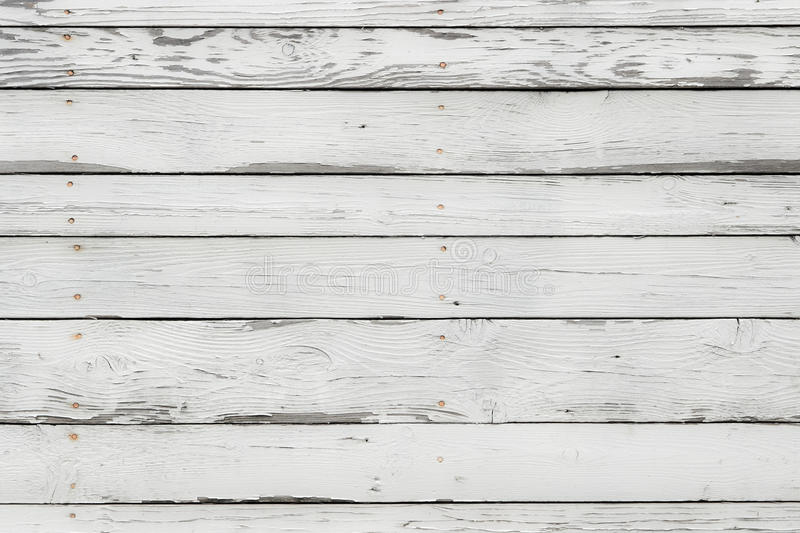 The white wood texture stock image