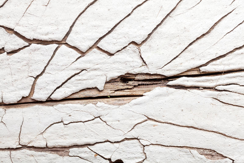 White wood texture with natural patterns stock photo