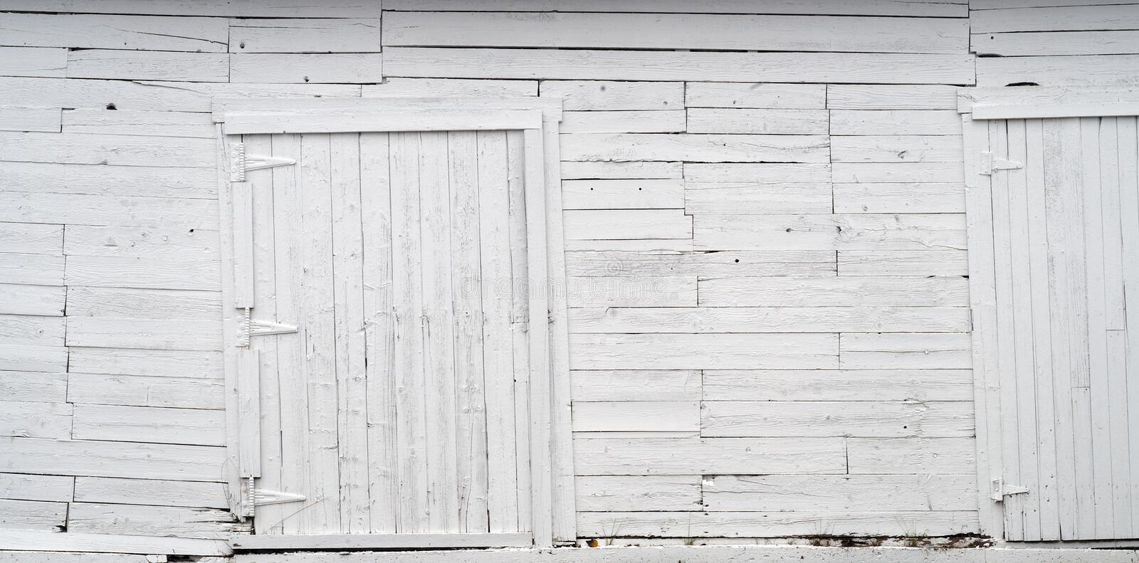 White wood wall old planks and wooden doors background texture. Old white peeling paint shed with doors, wood planks background texture stock photo