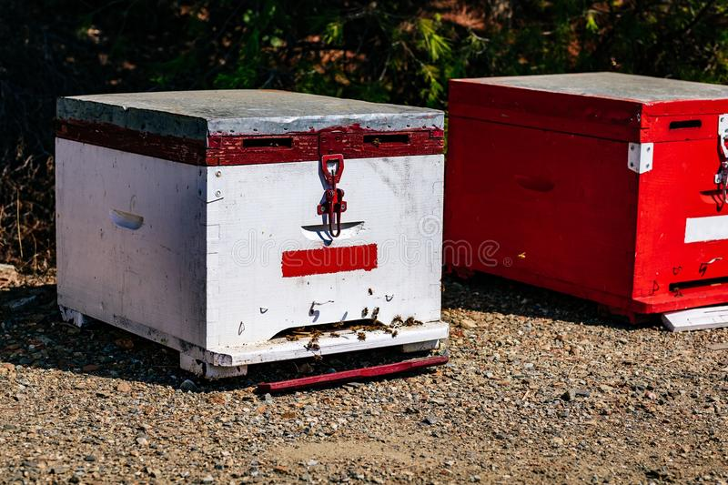 White wooden bee hive close-up in summertime. In Greece stock photo