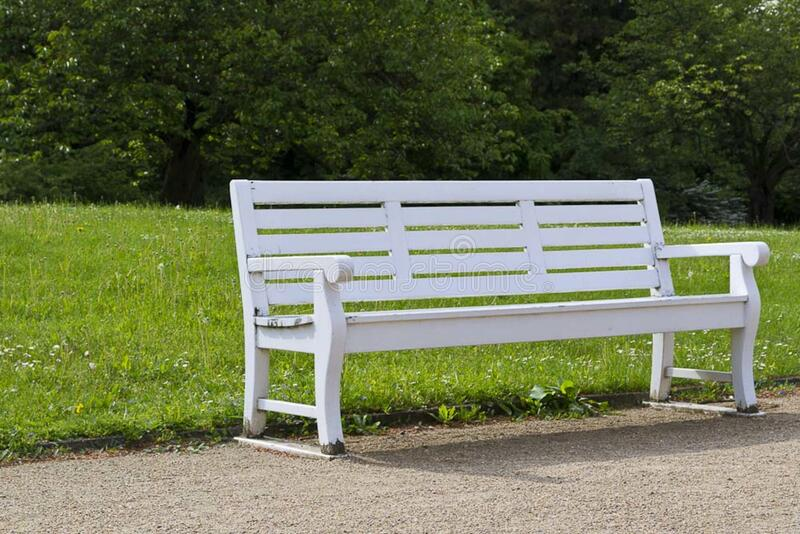 White wooden bench with grassland in the background stock photos