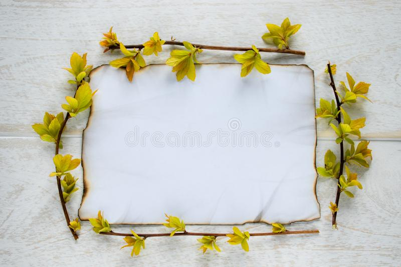 On white wooden boards, a sheet of paper is burned at the edges, and the branches are with yellow leaves. Leaving space for text stock image