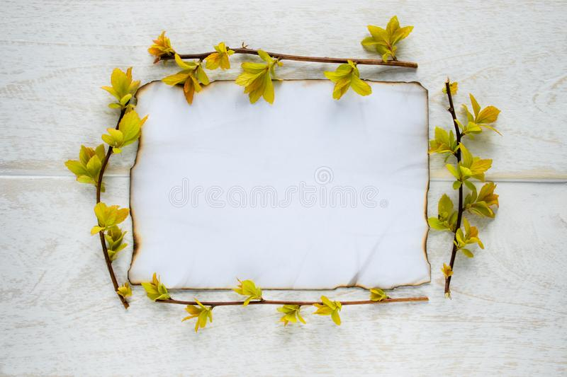 On white wooden boards, a sheet of paper is burned at the edges, and the branches are with yellow leaves. Leaving space for text stock photography
