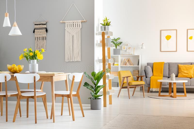 White wooden chairs at dining table in bright open space interio. R with armchair and couch. Real photo stock photography