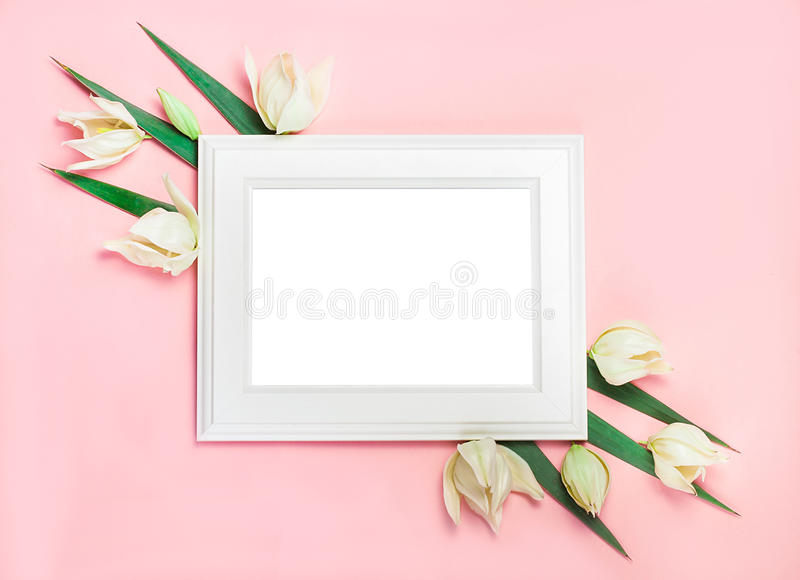 White wooden frame on pink background decorated with green leaves, blank space for a text. Top view, flat lay stock photo