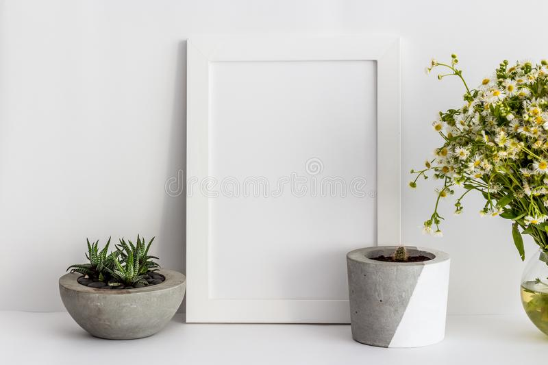 White wooden photo frame with cactus in a pot and daisies stock photos