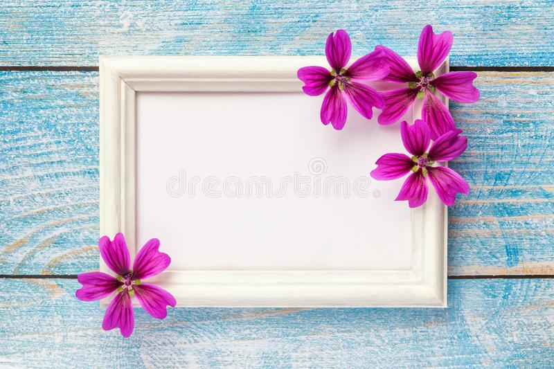 White wooden photo frame with purple flowers on pink paper background royalty free stock photography