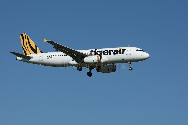 White and Yellow Tigerair Airplane stock photo