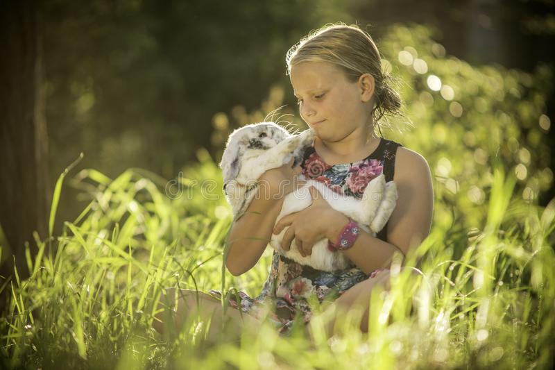 Young girl is holding white rabbit stock photography