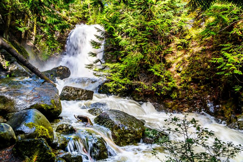 Whitecroft Falls, a waterfall on McGillivray Creek and a short hike from Sun Peaks Road near the town of Whitecroft. In the Shuswap region of the Okanagen in royalty free stock photo