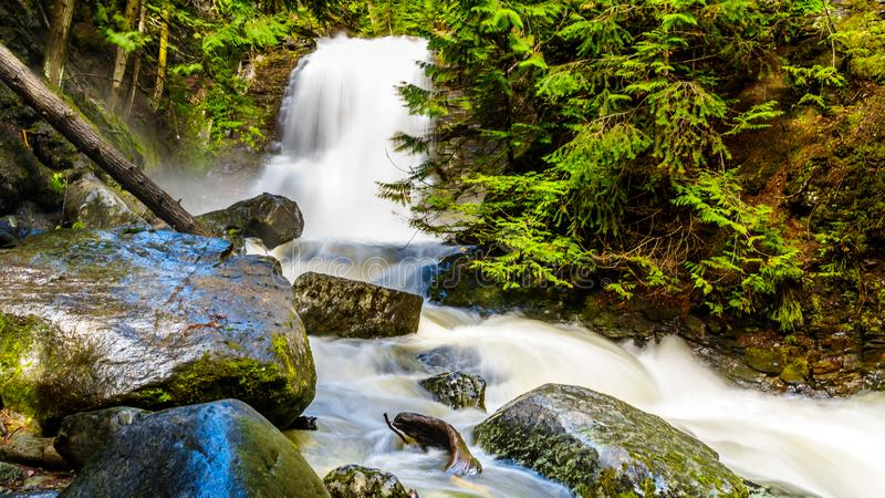 Whitecroft Falls, a waterfall on McGillivray Creek and a short hike from Sun Peaks Road near the town of Whitecroft. In the Shuswap region of the Okanagen in royalty free stock images