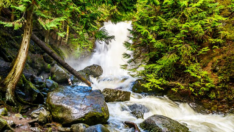 Whitecroft Falls, a waterfall on McGillivray Creek and a short hike from Sun Peaks Road near the town of Whitecroft. In the Shuswap region of the Okanagen in stock photo