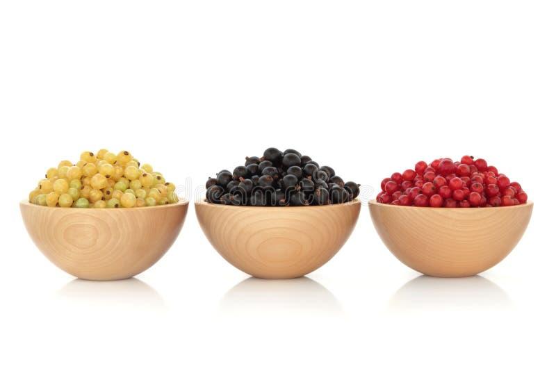 whitecurrant för svart vinbärfruktredcurrant arkivfoton