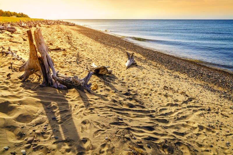 Whitefish Point, Michigan. Beach on Lake Superior in Whitefish Point, Michigan, Upper Peninsula royalty free stock photo